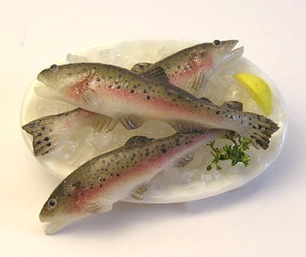 learn to sculpt rainbow trout, doll house food
