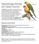 Suprimentos para esculpir um papagaio 1/12 escala